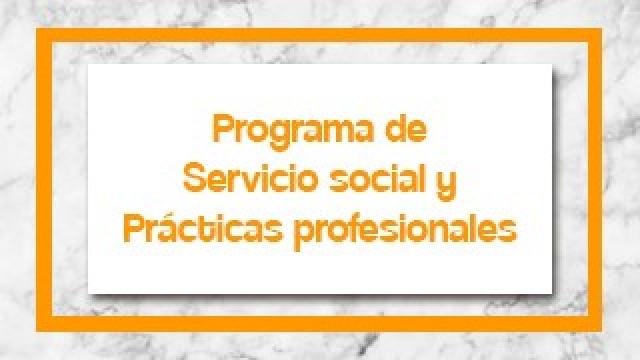 Servicio social y práticas profesionales